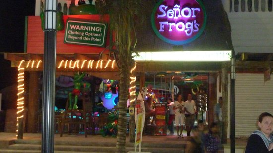Senor Frog's : Awsome place!