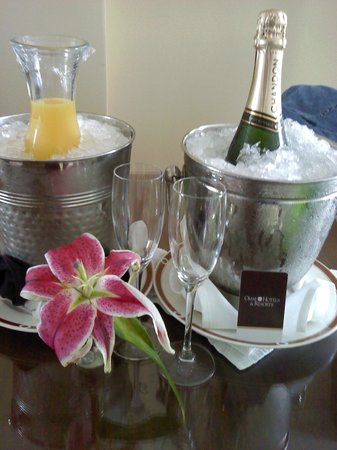 Omni Royal Orleans:                   Nice Surprise