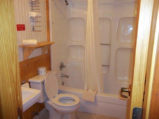 Petit Jean Campground :                   Spacious Bathroom