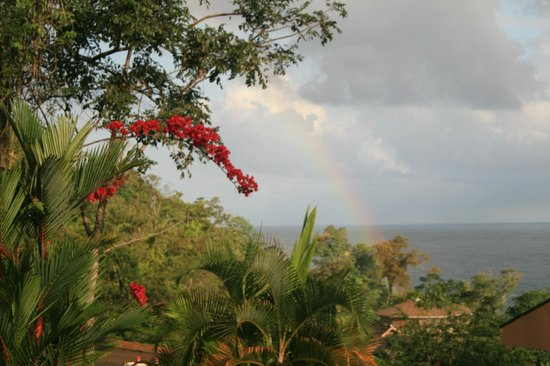 Red Frog Beach Island Resort & Spa:                   Rainbow over Red Frog