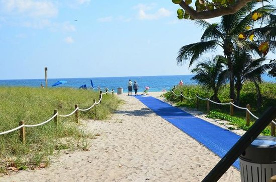Budget Inn Ocean Resort:                   Walkway to beach just minuties from hotel