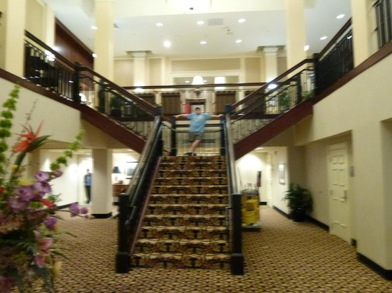 Hampton Inn & Suites Baltimore Inner Harbor:                   steps to go main lobby