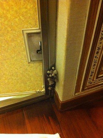 Erin Hotel:                   近照