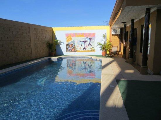 Casa Marin B&B : Pool