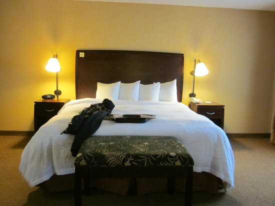 Hampton Inn & Suites San Antonio Airport: King Bed