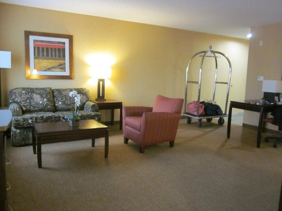 Hampton Inn & Suites San Antonio Airport: Studio Suite