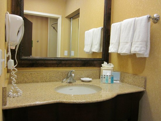 Hampton Inn & Suites San Antonio Airport: Bathroom Vanity