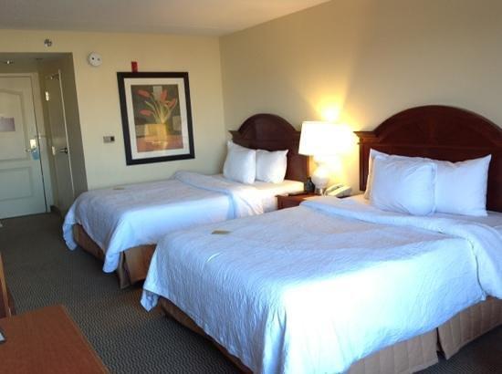 Hilton Garden Inn Indianapolis/Carmel: Hilton Garden Inn Room Carmel - Indianapolis
