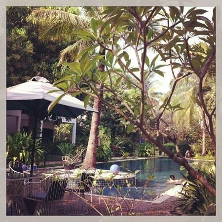 La Maison d'Angkor:                   piscine