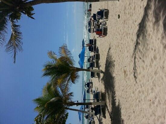 Playa Palms Beach Hotel: hotel beach area