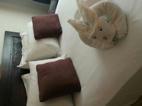 Playa Palms Beach Hotel: little details like this one...a rabbit towel