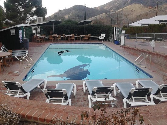 The Kern Lodge:                   Orca Pool