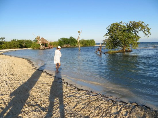 Hacienda Tres Rios: Right next to the outlet of one of the rios, great beach for kids