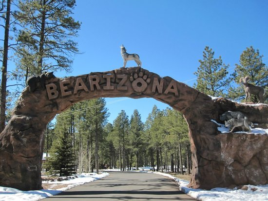 Bearizona Wildlife Park: Entrance to Bearizona