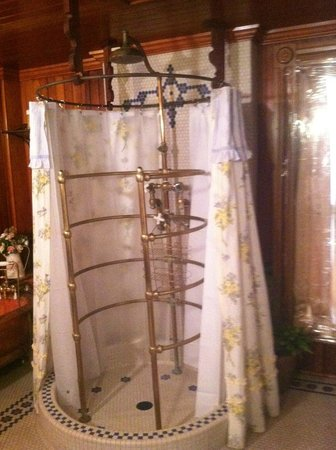 Montgomery Mansion Bed & Breakfast:                   Wild surround shower