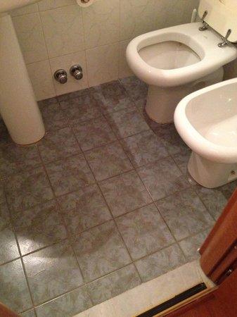 Hotel Genius Downtown :                   toilet that keeps on running