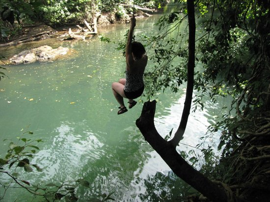 Drake Bay, Costa Rica:                   Jumping from a rope swing