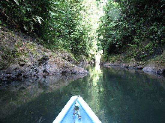 Drake Bay, คอสตาริกา:                   Paddling up the Rio Claro