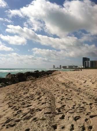 Bonaventure Resort & Spa: good morning miami beach!