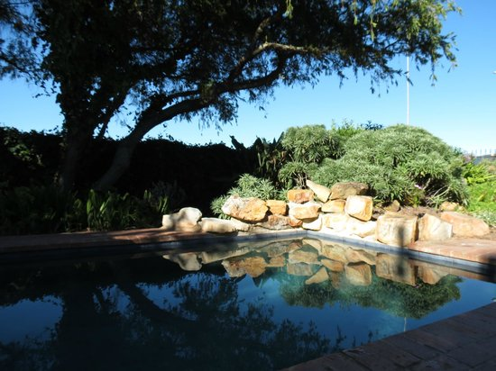 Idle Monkey: The pool in the eary morning
