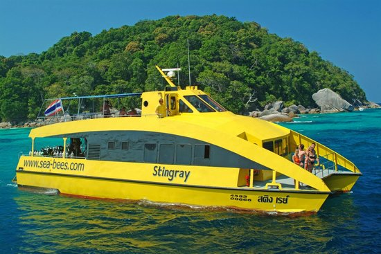 Sea Bees Diving Khao Lak - Day Tours: Our dive catamaran, the MC Stingray