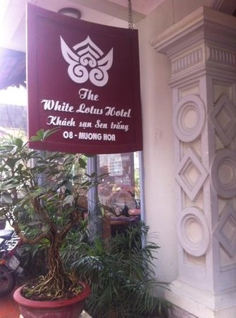 The White Lotus Hotel:                   the white lotus hôtel