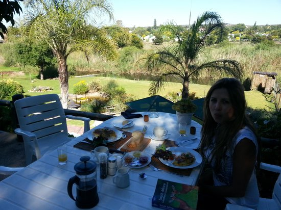 Yotclub B&B:                   Breakfast in the gardens