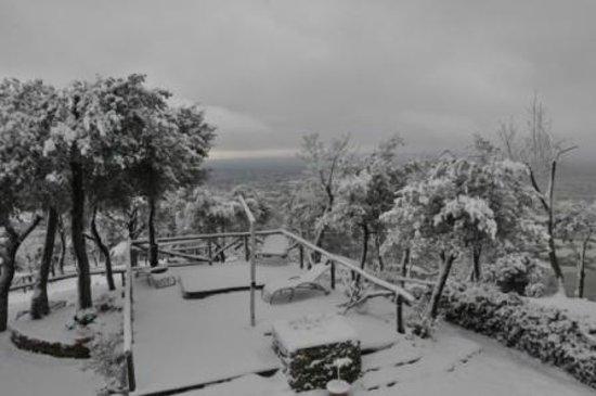 Relais Villa San Bastiano:                   Panorama dal Relais