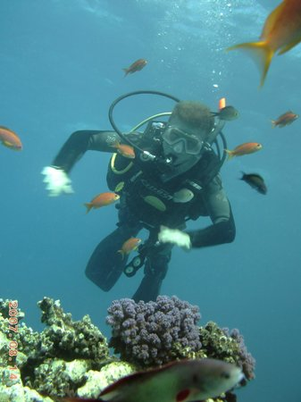 Scuba Tribe diving center:                   Me as Action Man in the water