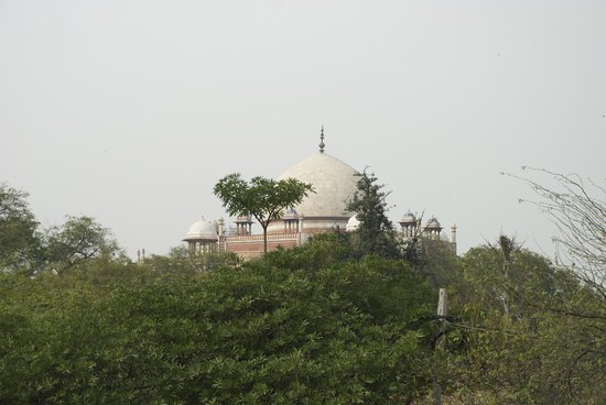 B Nineteen (B-19) Bed & Breakfast:                   a view of Humayun's Tomb from the balcony