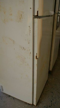 Ingenia Holidays Noosa:                   The 2 rusty dirty fridges.