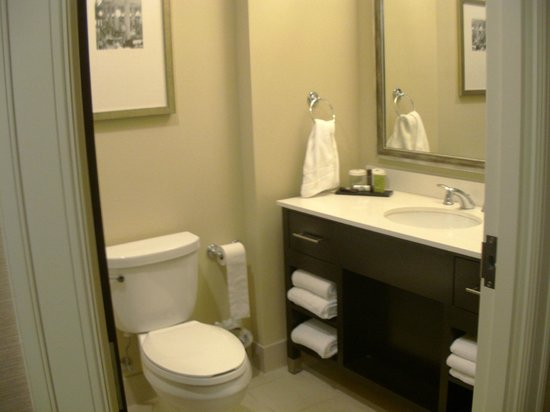 Embassy Suites by Hilton St. Louis - Downtown:                   Bathroom