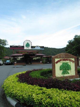 Mangrove Paradise Resort :                   Entrance