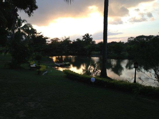 Hotel Yapahuwa Paradise :                   Blick von der Terasse unseres Bungalows