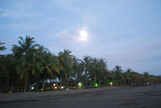 Clandestino Beach Resort:                   hotel desde la playa
