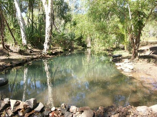 Lorella Springs Wilderness Park: LORELLA SPRINGS NT