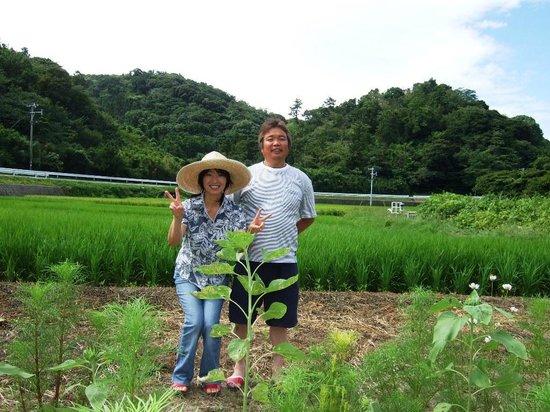 Pension Nojigiku: 田んぼ作りも楽しんでいます