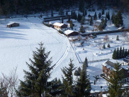 Hotel Schwarzbeerschänke: Blick Rodelberg