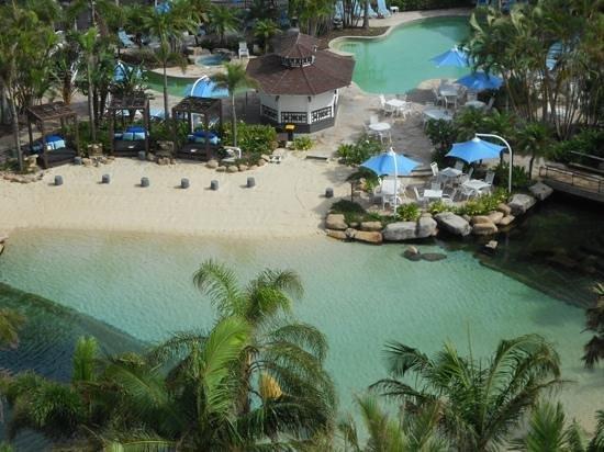 Surfers Paradise Marriott Resort & Spa:                   The pool