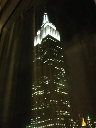 Hilton Garden Inn New York/West 35th Street:                   the amazing view from my bedroom window