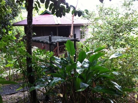 Sepilok Forest Edge Resort:                   one of the cabins