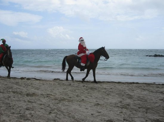 Coconut Bay Beach Resort & Spa: Christmas day 2012