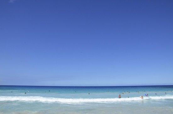 Manini'owali Beach (Kua Bay):                   青のグラデーションがきれいです