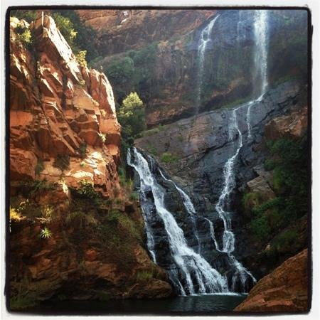 Walter Sisulu National Botanical Gardens: waterfall