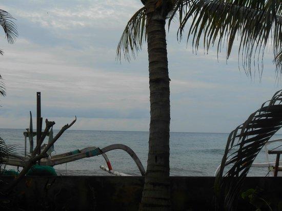 Apa Kabar Villas:                                     Beach view