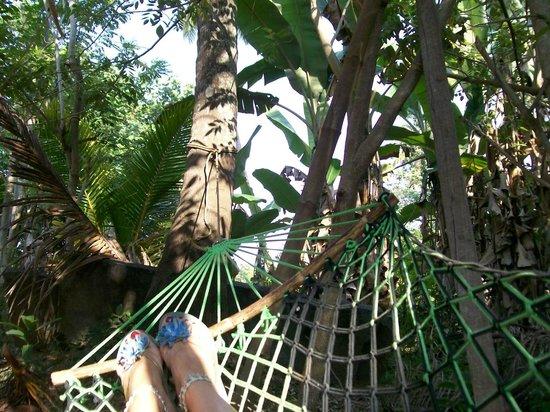 Big Banana Island Retreat:                   Hängematte