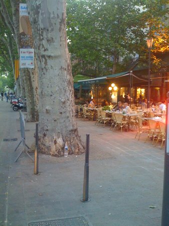 Hôtel de Gantés :                   Otelin disi