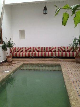 Riad Bouganvilliers:                   la piscine