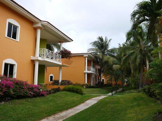 Ocean Maya Royale:                   Kamer 2406 boven met een leuk balkon