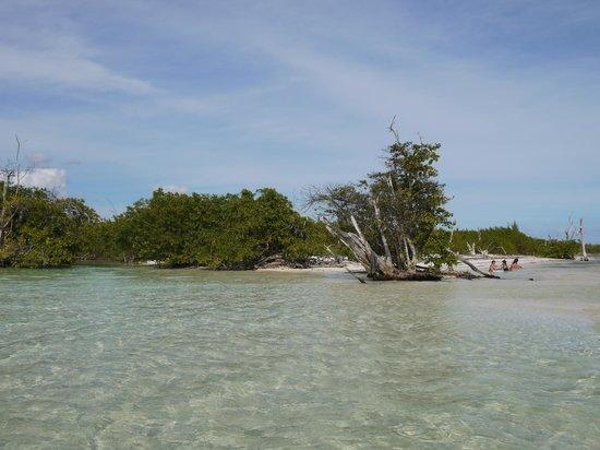 Ocean Maya Royale:                   10 minuutjes lopen, prachtige lagune
